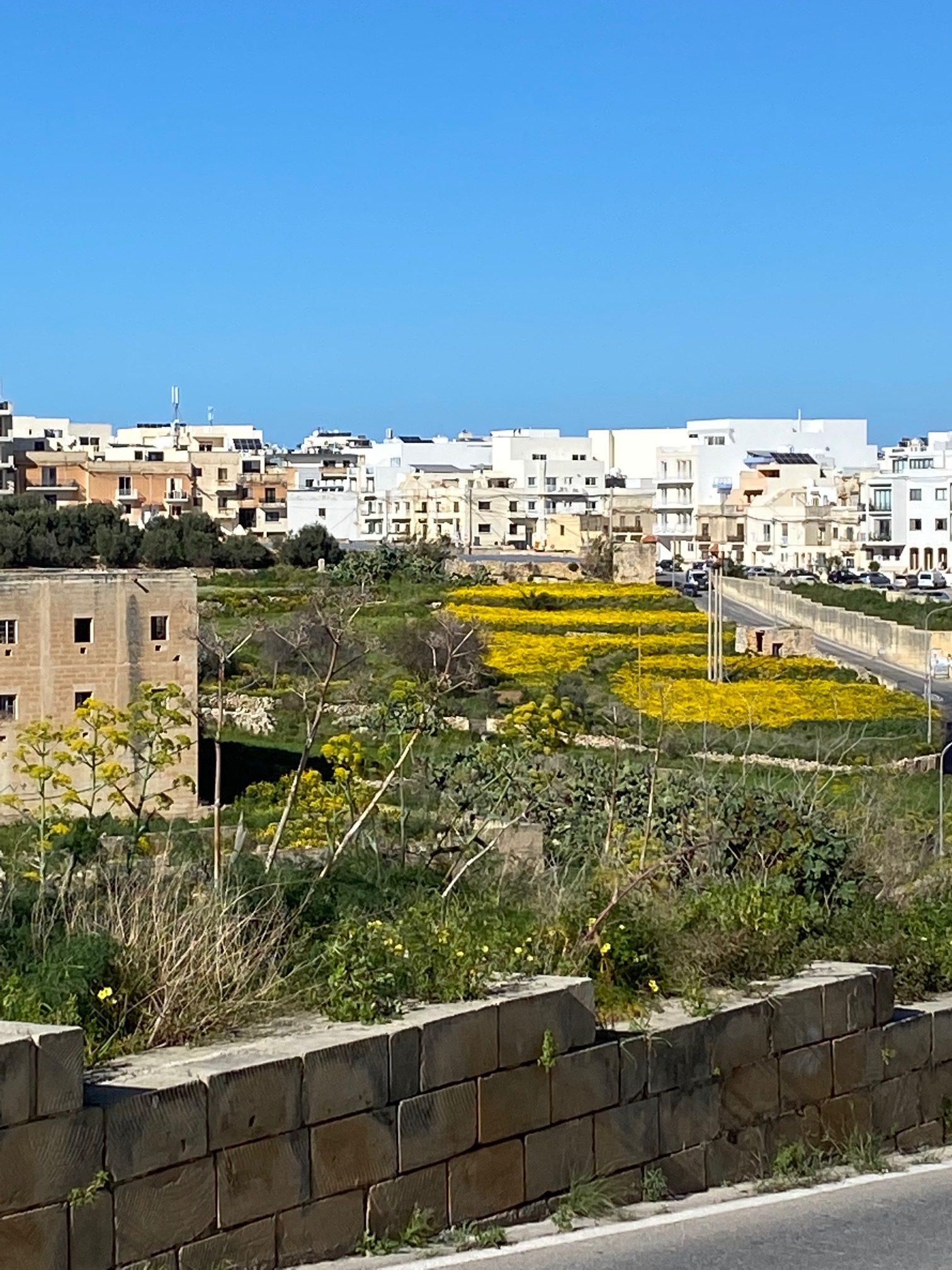 マルタ留学 マルタの気候(今年限定!?) | 代々木グローバル高等学院[公式]