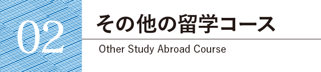 の他の留学コース